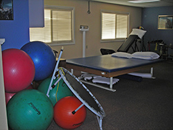 Multiple Therapy Areas